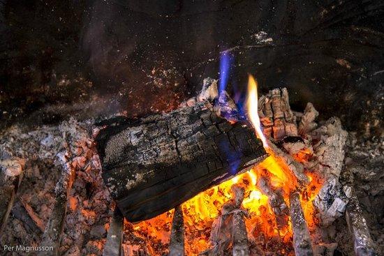 La Ferme du Coucou : Warm and cosy