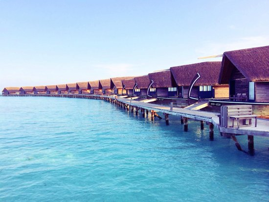 Cocoa Island by COMO: Walkway to rooms