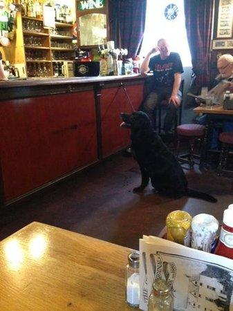 Moulin Hotel Restaurant: mira el perro!