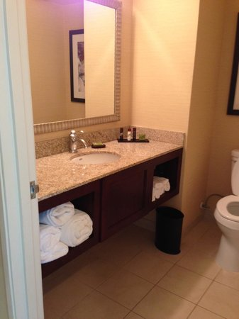 Embassy Suites by Hilton Tampa - Downtown Convention Center: bathroom