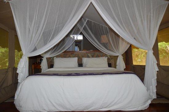 Sarova Mara Game Camp: Teltet jeg bodde i :)