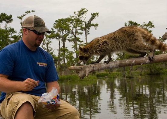 Louisiana Tour Company Foto