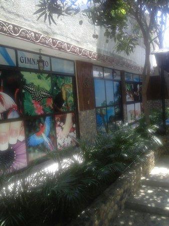 Club Hotel Campestre La Guajira: Espas y ginnasio
