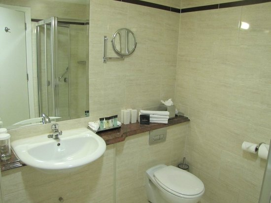 Dunboyne Castle Hotel And Spa: junior suite bathroom