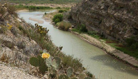 Santa Elena Canyon: View looking back into the Big Bend National Park