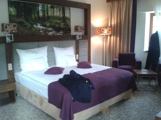 Mercure Krynica Zdroj Resort & Spa: Room