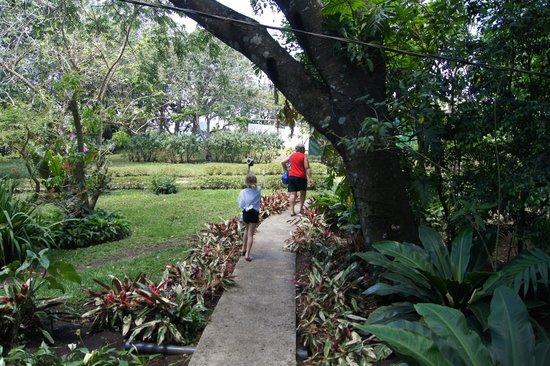 Cabañas Valle Campanas: Path to the main house