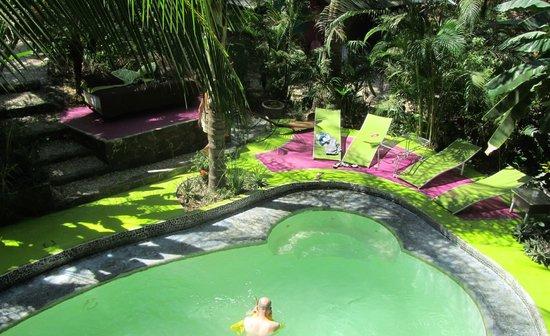 La Tropicale Beach Lodge: Un bel environnement