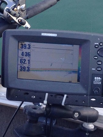 Let's Go Fishing AR : Helpful technology..,