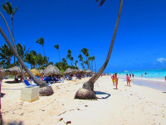VIK Hotel Arena Blanca : Clean beach