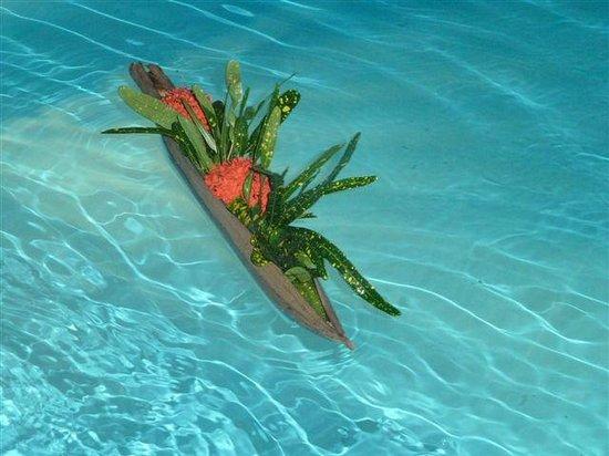 Les Jardins de Pointe Noire : Bateau sur l'eau, de la piscine...