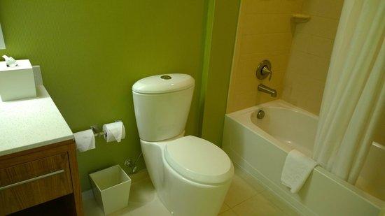 Home2 Suites By Hilton Augusta : Bathroom