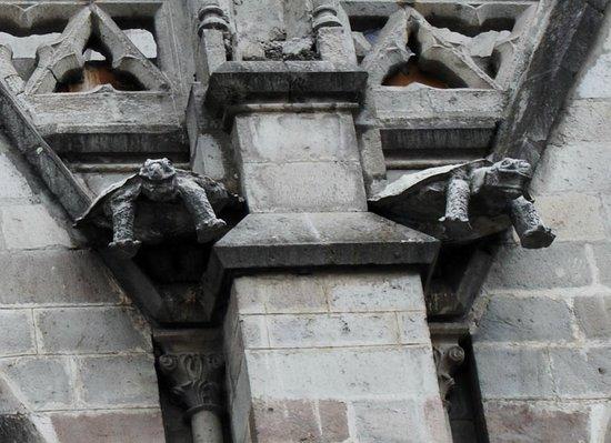 Basílica del Voto Nacional: tortoise gargoyles