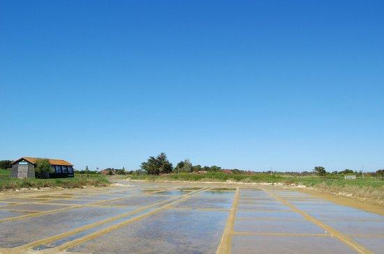 Le Port des Salines : .