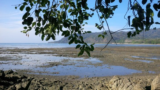 Isla de Cabuya: really nice walk out to the island at low tide