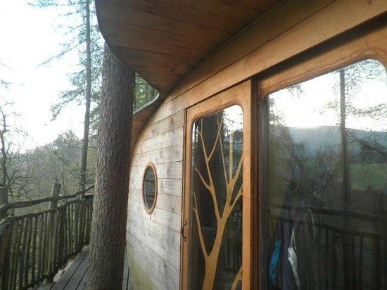Living-Room Treehouses: sunrise