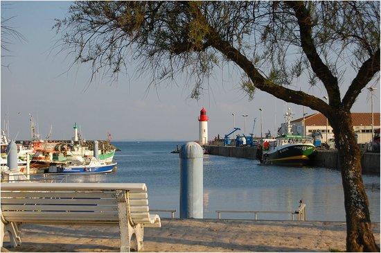 Le Port de la Cotinière : .