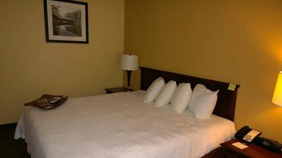 Hampton Inn Madison: King bed