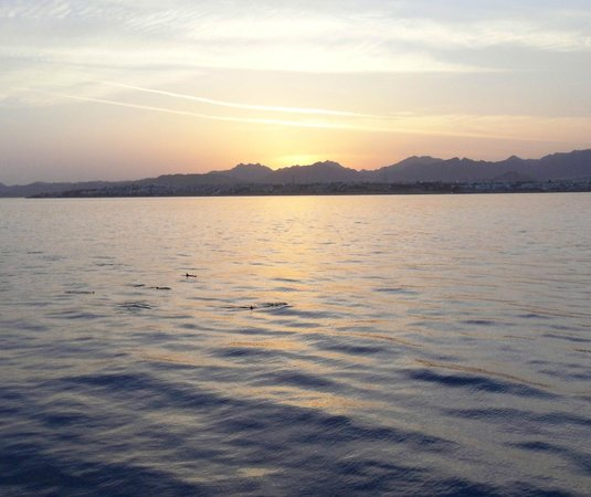 Xperience St. George Homestay: Sunset cruise