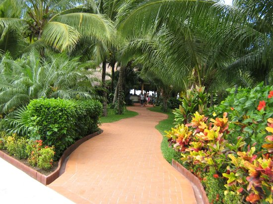 Paradise Beach: Beautiful Grounds