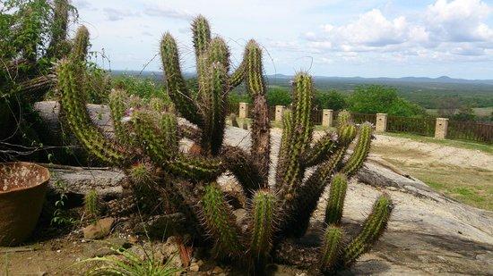 Pedra dos Ventos Resort: Visão panorâmica privilegiada