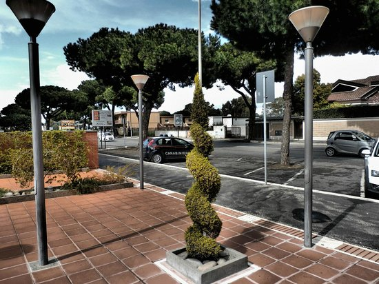 BEST WESTERN Hotel I Triangoli: I just love this tree