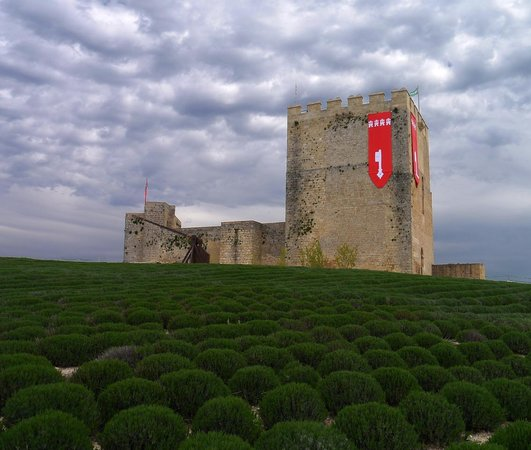 Fortaleza de la Mota: CASTILLO DE LA MOTA