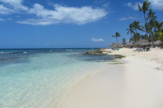 Public beach of Dominicus at Bayahibe: .