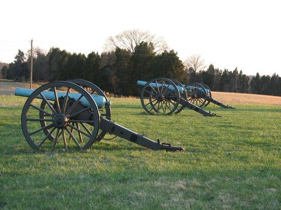 Manassas National Battlefield Park: Federal Battery