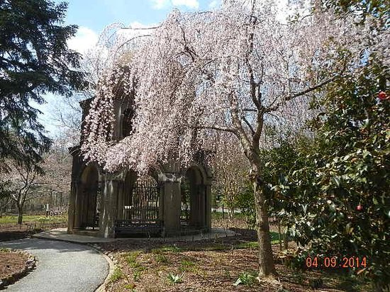 Franciscan Monastery of the Holy Land : chapel of ascension-cherry blossoms