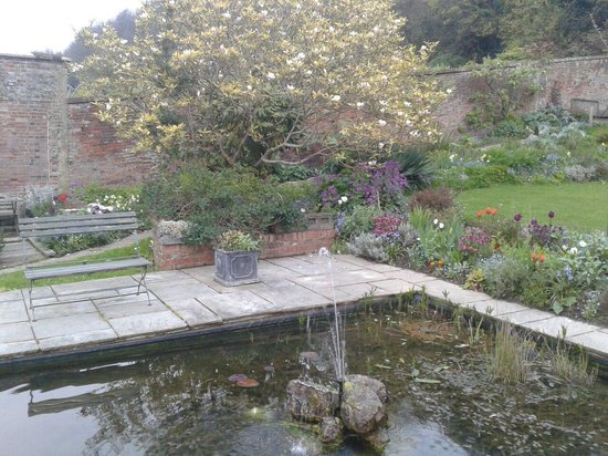 The Old Rectory: Jardin