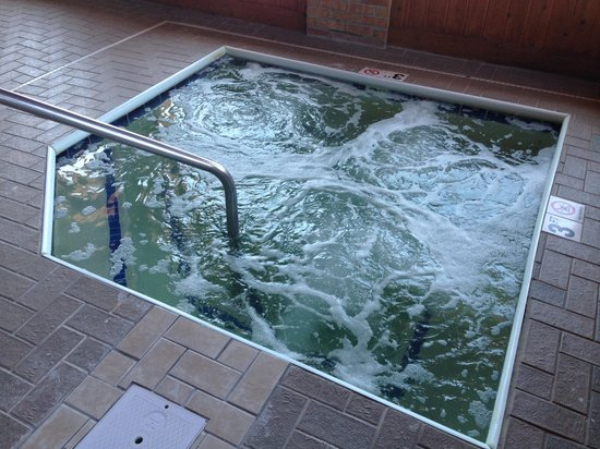 Baymont Inn & Suites Port Huron: Hot Tub