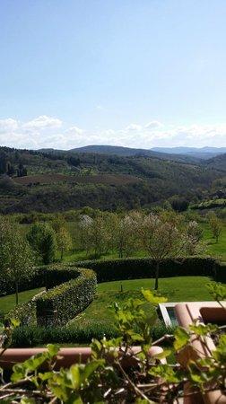 Castello d'Albola: toscana
