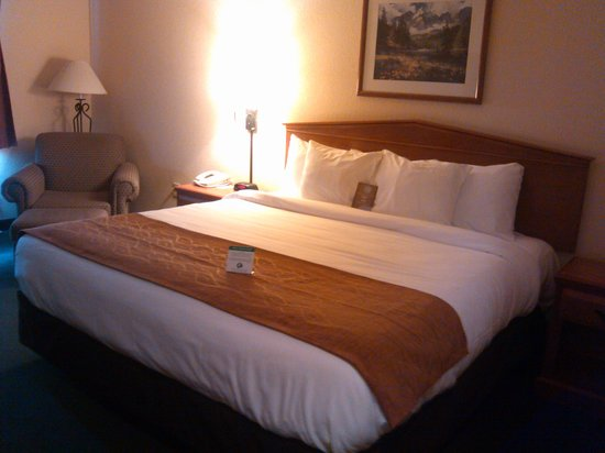 Comfort Inn and Suites Tualatin - Portland South: king room