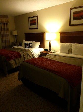 Comfort Inn & Suites Dover: Comfy Queen beds (rm 221)