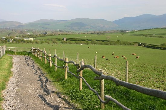 Wellington Farm Cafe & Tearooms: The panoramic view of the Cumbrian fells