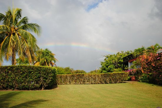 Blue Horizon Boutique Resort : Rainbow