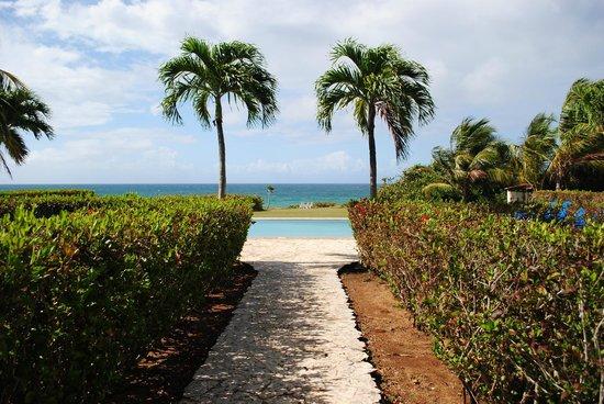 Blue Horizon Boutique Resort: Pool