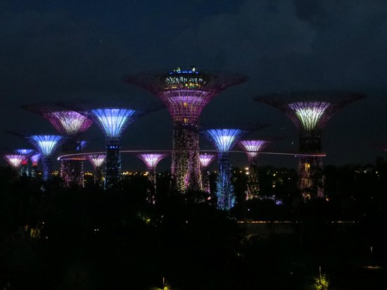 Orchard Hotel Singapore: Garden in the bay