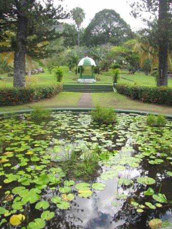 Botanical Gardens: pond