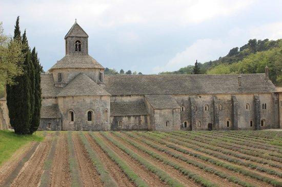 Abbaye Notre-Dame de Sénanque : abbaye