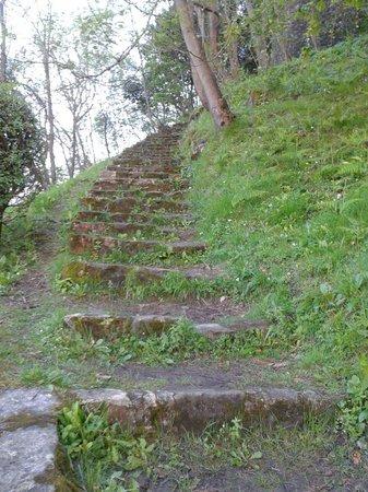 Monte Urgull: Subida al monte
