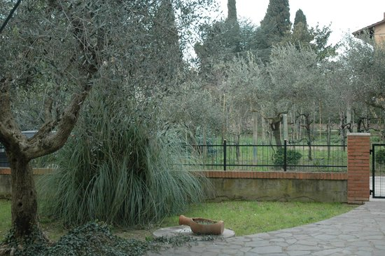 Luly's House: giardino con ingresso indipendente