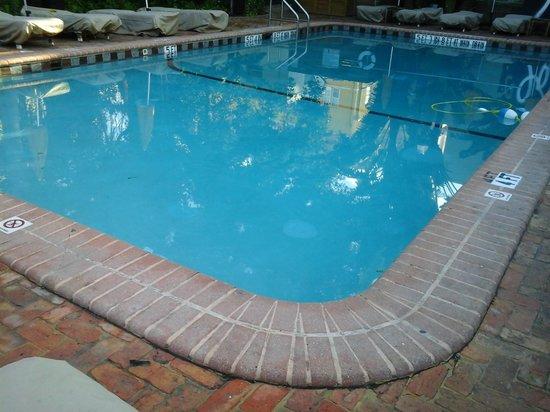 Freehand Miami: A piscina, apesar de estar vazia, fica sempre lotada!