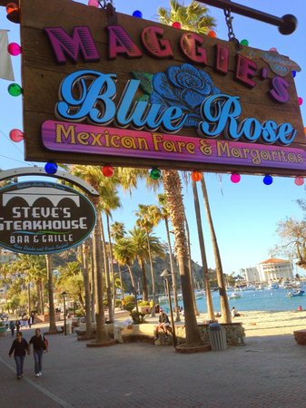 Maggie's Blue Rose, overlooking Crescent Avenue and Avalon Bay on Santa Catalina Island!