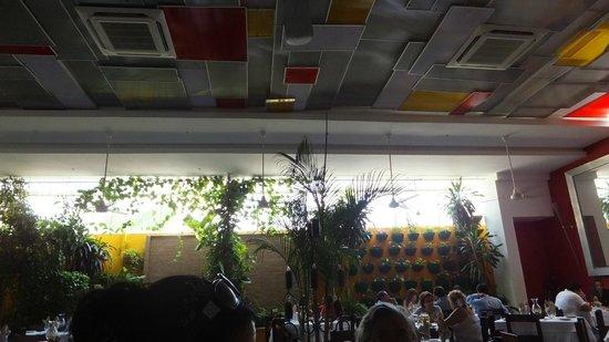 La Olla Cartagenera: Ceiling and Beautiful Plants on Wall