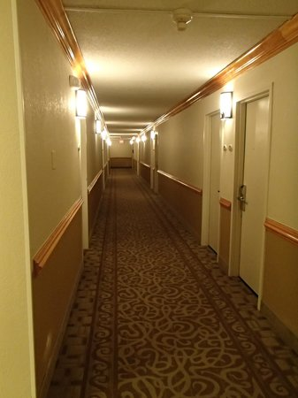 Comfort Inn On The Ocean: Hallway