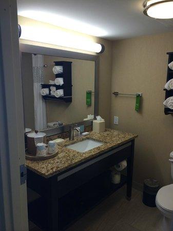 Hampton Inn Daytona Beach/Beachfront: Bathroom