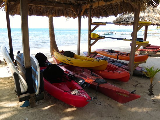 Off The Wall Dive Center & Resort: Kayaks and stand up paddle boards