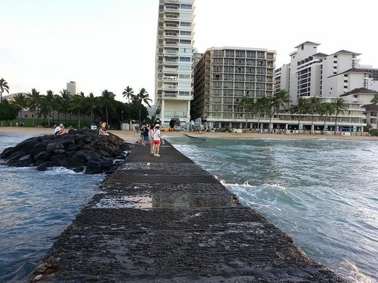 Outrigger Reef Waikiki Beach Resort: sea wall-great place to take sunrise pictures or watch the sunset